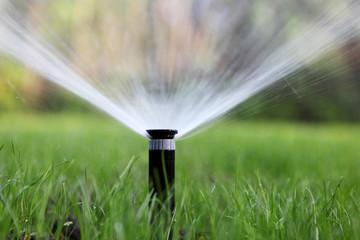 Systemy automatycznego nawadniania firmy Rain Bird
