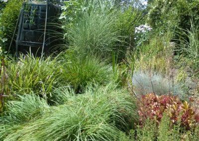 Trawy na mojej działce
