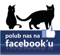 https://www.facebook.com/siatkikocie/